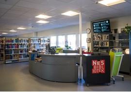 nes_public_library_no_019.jpg