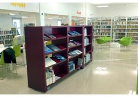 falco_marin_public_library_it_004.jpg