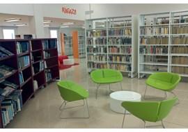 falco_marin_public_library_it_005.jpg