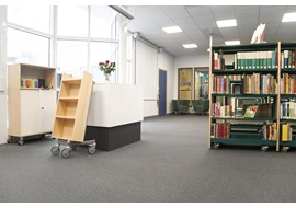 malmoe_rosengaerdensskolan_school_library_se_004.jpg
