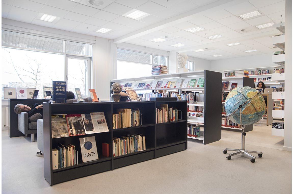 Schoolbibliotheek Greve, Denemarken - Schoolbibliotheek
