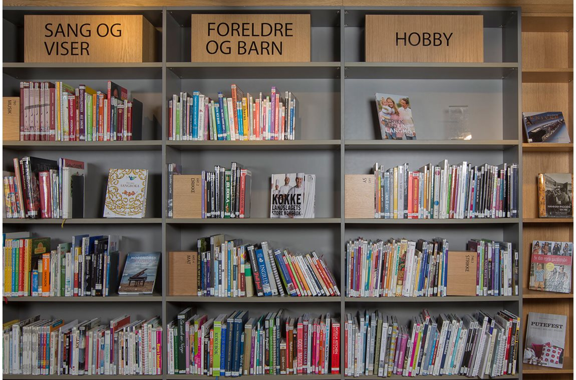 Longyearbyen Public Library, Norway - Public libraries