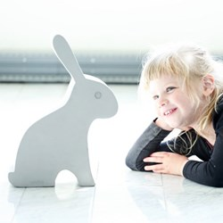 E2482 - Hare